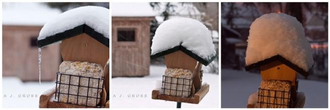 First Major Snowfall of 2010-2011 Season