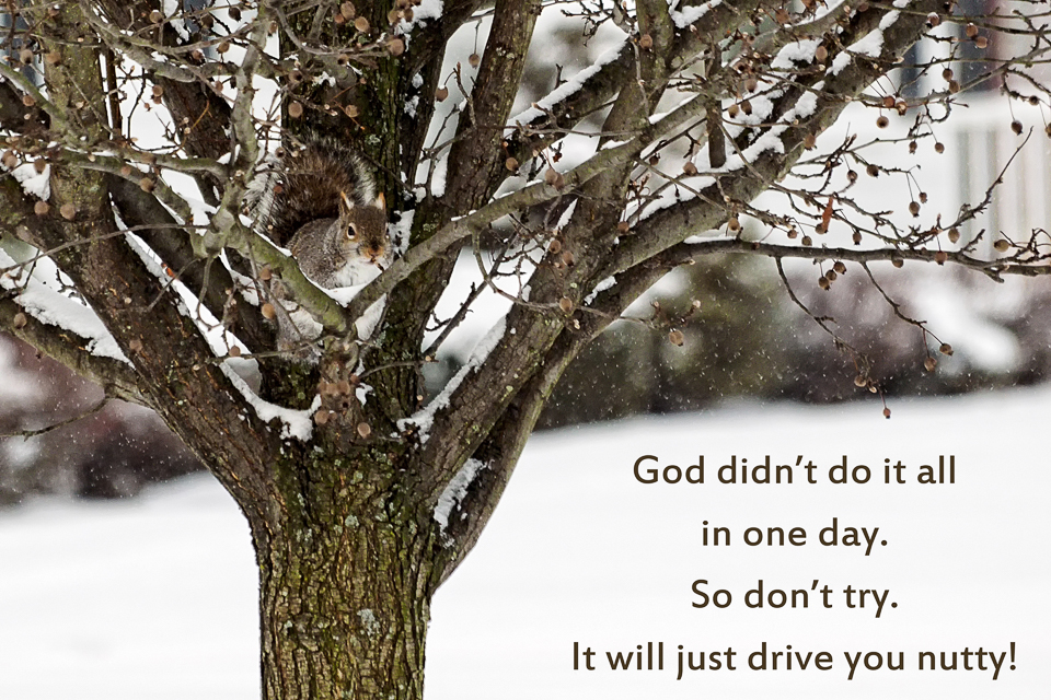 God didn't do it all in one day.  So don't try.  It will just drive you nutty!